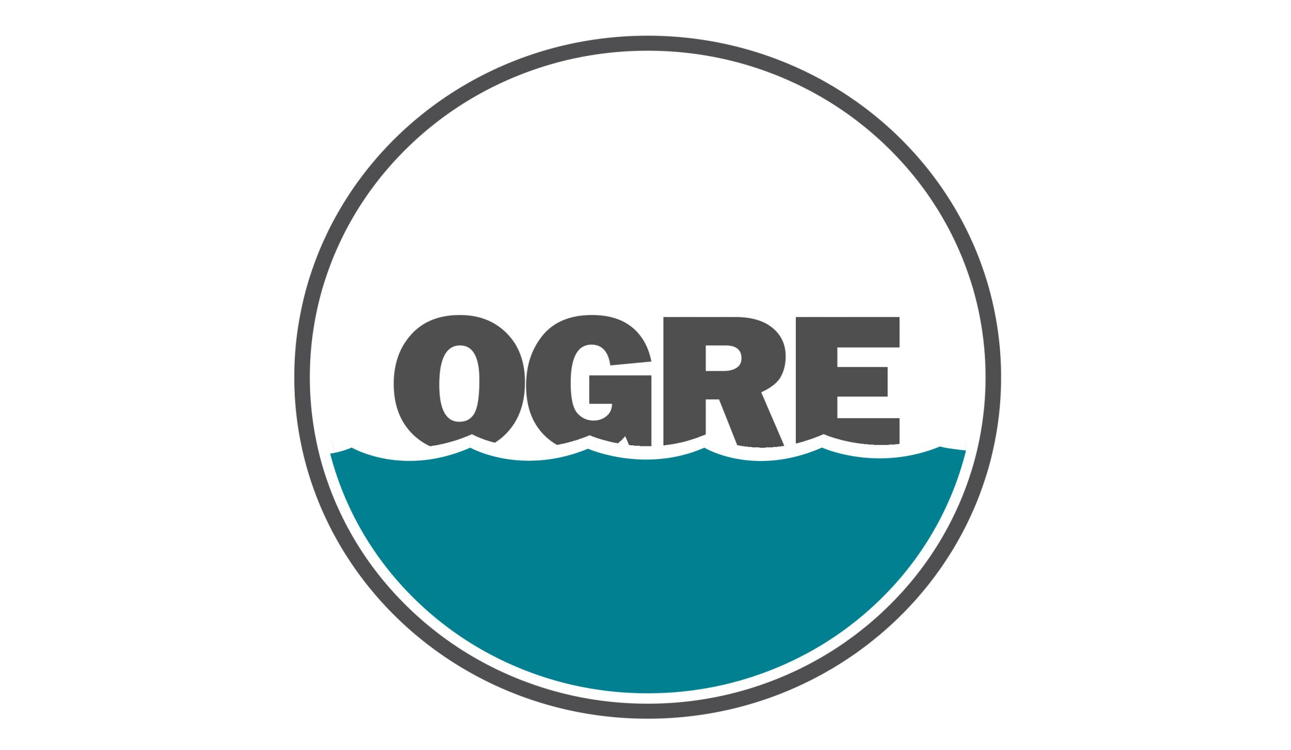 Project results - Ogre