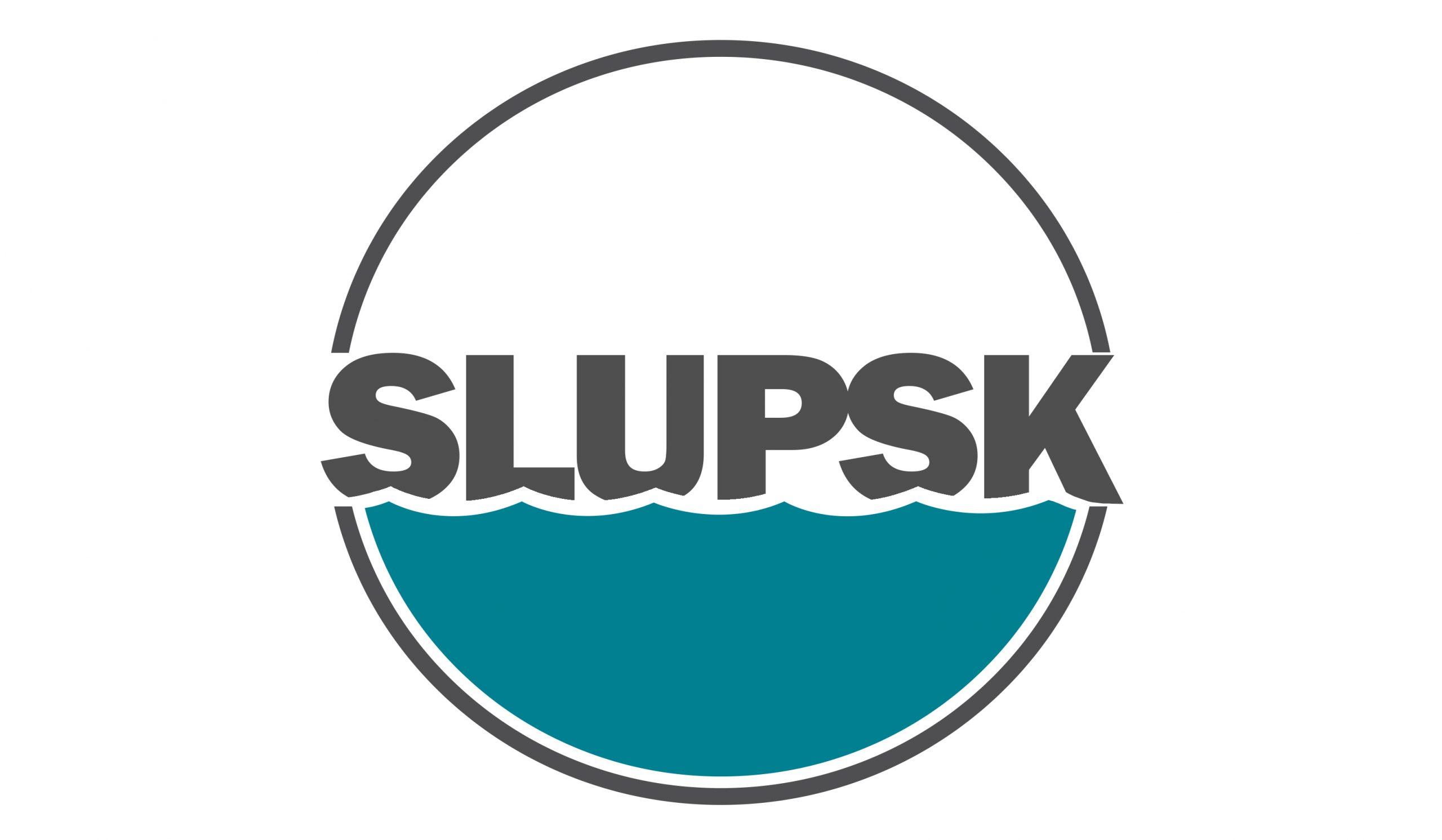 Project results - Slupsk
